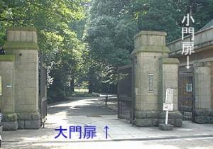駒場公園の正門