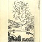 「白樺」創刊号 明治43年
